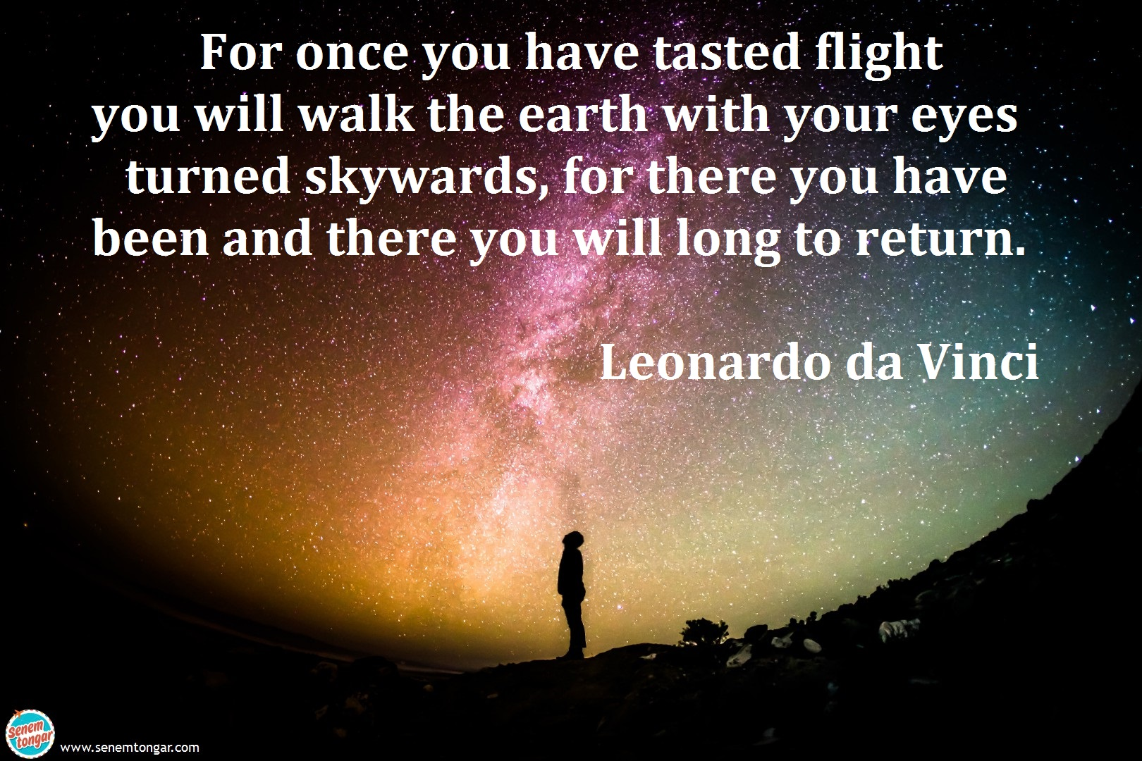 for once you have_leonardo da vinci